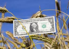 Poranne wiadomości walutowe. Funt aż po 5.2596 zł! Wymieniasz euro albo dolara? Sprawdź aktualne kursy średnie NBP 9 września!
