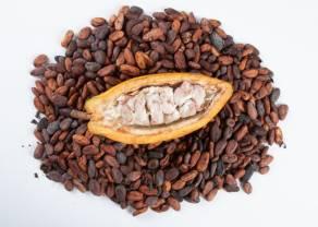 Ile zapłacisz teraz za cukier, kakao i kawę? Notowania surowców 20 września