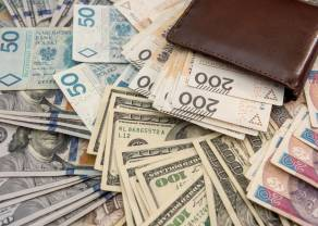 Jak na wydarzenia rynkowe zareagował dolar amerykański USD? Najświeższe dane z rynku walut!