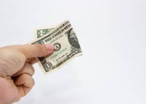 Na jakim poziomie utrzymują się kursy głównych walut? Sprawdź, co wydarzyło się na rynku walut!