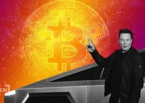 Elon Musk i Jack Dorsey twierdzą, że Bitcoin jest nadzieją dla świata! Cena BTC podskoczyła więc o blisko 12% - zwrot na rynku kryptowalut?