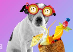 DOGE i SHIB odnotowują w weekend największe wzrosty z TOP 100