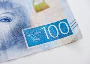 Koniecznie zobacz  co działo się na rynku walut! Kursy euro do leja rumuńskiego, euro do korony szwedzkiej, euro do korony norweskiej