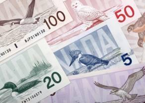 Euro do dolara nowozelandzkiego - Czym tym razem zaskoczy nas rynek walutowy?