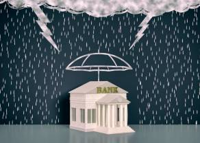 Anatomia kryzysów bankowych