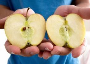 Apple z wynikami finansowymi za II kwartał 2020 r. Spółka zapowiada split akcji