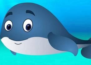 Bitcoin - czy wieloryby wpływają na zmienność rynku?