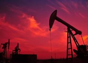 Cena ropy Brent przy tegorocznych szczytach! Wykres tygodnia - Surowce