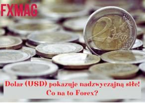 Co dalej z kursem euro (EUR)? Dolar amerykański (USD) pokazuje nadzwyczajną siłę! Jak zareaguje na to wszystko rynek walutowy FX?