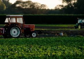 Co dzieje się na rynku produktów rolnych?