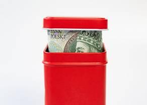 Członek RPP: NBP powinien osłabiać polskiego złotego i utrzymywać stopy procentowe jak najniżej