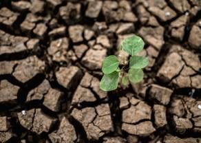 Czy jesteśmy w punkcie zwrotnym inwestowania w zmiany klimatu?