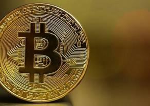 Czy zainteresowanie kryptowalutą bitcoin wzrasta