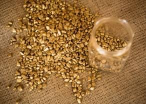 Czy złoto jest naturalnym zabezpieczeniem przed inflacją? Budowa bardziej zdywersyfikowanego portfela inwestycyjnego