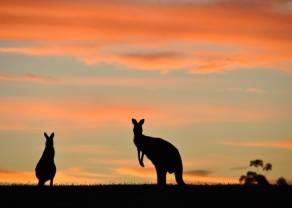 Dane z Australii zaskoczyły rynek