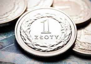Dane z Polski wypadają lepiej od średniej dla strefy euro, ale wciąż to mało. Co w dalszym horyzoncie będzie ciążyć kursowi polskiego złotego?