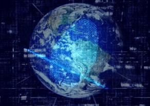 DataWalk będzie tropić nadużycia u amerykańskich ubezpieczycieli. Kurs rośnie