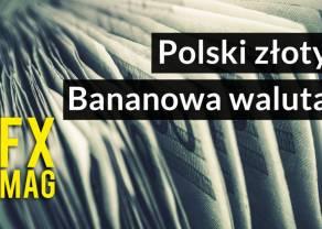 Dlaczego gdy jest źle polski złoty dostaje po gębie? Historia, fakty oraz ciekawostki na temat naszego PLN'a