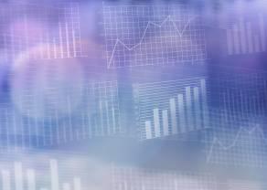Dobra dynamika wyników GPM Vindexus. Jak zareagowali inwestorzy?