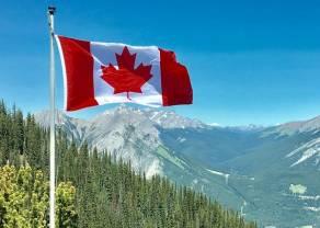 Dolar kanadyjski (CAD) najmocniejszą walutą. Euro, dolar, frank, funt i jen na rynku Forex w piątek wieczorem