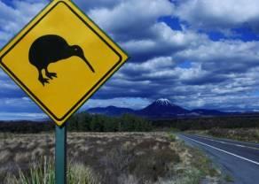 Dolar nowozelandzki coraz mocniejszy - decyzja RBNZ już w nocy. W oczekiwaniu na mocne ruchy kursu walutowego