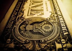 Dolar reaguje na dane z sektora usług