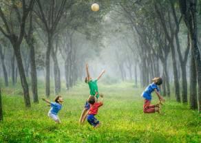 Dzień dziecka… na giełdzie. Do 2021 roku prognozowana wartość rynku zabawek ma zwiększyć się do 26,9 miliardów dolarów
