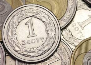 Eksporterzy i importerzy walczą o każdą złotówkę