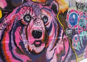 Euro - najwięcej niedźwiedzi od grudnia 2016