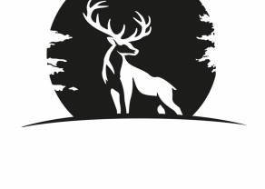 Forestlight Games S.A. rozważy przeprowadzenie emisji akcji przed debiutem! Spółka z Grupy PlayWay planuje debiut rynku NewConnect w połowie br