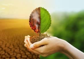 Forum Odpowiedzialnego Biznesu dołącza do Climate Governance Initiative i inauguruje działalność Chapter Zero Poland
