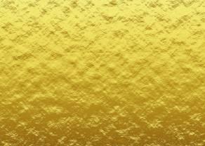 Golden Pocket- co to jest i jak na tym zarobić?