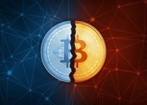 Halving Bitcoina coraz bliżej – zainteresowanie rośnie