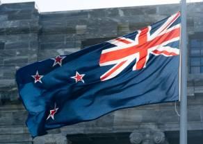 Hub analityczny – tydzień z NZD