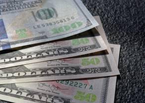 Indeks dolara najwyżej od czterech miesięcy. Kurs euro do amerykańskiej waluty pójdzie w górę? Sytuacja na rynkach