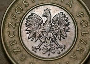 Inflacja w Polsce znów spada - złoty mocno reaguje