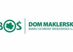 Informacje szczegółowe na temat raportu DM BOŚ