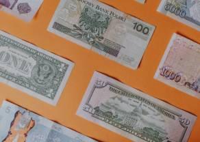 Jak inwestować w waluty? Raport TMS podpowie, na co warto zwrócić uwagę
