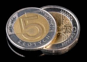 Jeden jastrząb wiosny nie czyni. Inflacja w Polsce przekracza granicę tolerancji