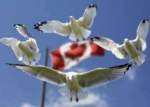 Kanada publikuje decyzje dot. stóp procentowych. Kurs dolara USD/CAD w górę