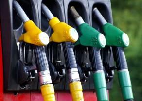 KNF wyklucza Petrolinvest z obrotu - kurs akcji się załamuje