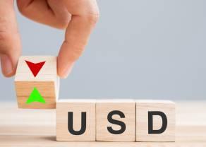 Komentarz walutowy (euro, dolar, frank, funt) – kurs USD traci na wartości po decyzji Fed, który podgrzewa i tak przegrzewającą się gospodarkę