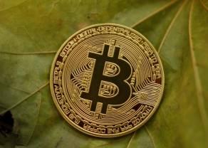 Kurs Bitcoina w górę! Ile zapłacimy za Ethereum, Litecoina i Ripple? Kursy kryptowalut 3 lipca