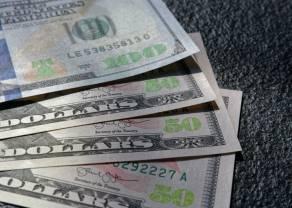 Kurs dolara USD w odwrocie. Inwestorzy znów mają apetyt na ryzyko. Dzień na rynku