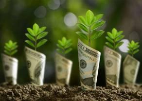 Kurs dolara (USD) może zakończyć tydzień największym wzrostem od miesiąca! Niespodzianki na rynku walutowym