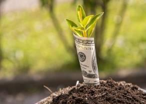 Kurs euro (EUR) i dolara amerykańskiego (USD) zagrożone silnymi wahaniami z powodu publikacji makro i decyzji polityczno-ekonomicznych