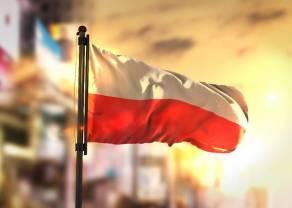 Kurs polskiego złotego (PLN) - Dzień Niepodległości spokojny na rynku