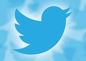 Kurs Twittera w dół - co jest przyczyną spadku?