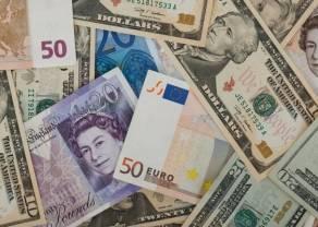 Kurs walutowy vs gospodarka
