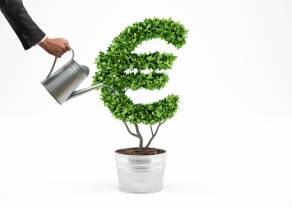 Kursy i analiza walutowa (EUR/PLN, USD/PLN, EUR/USD): polski złoty osłabia się względem euro i dolara